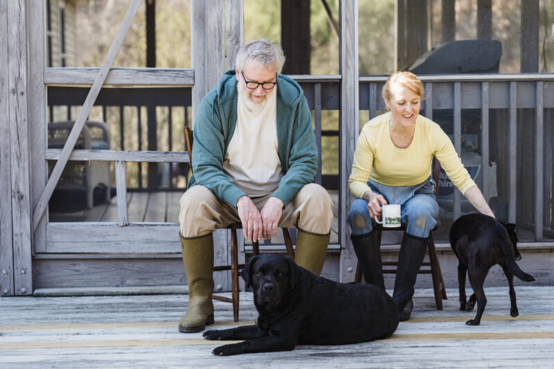 pets improves aging