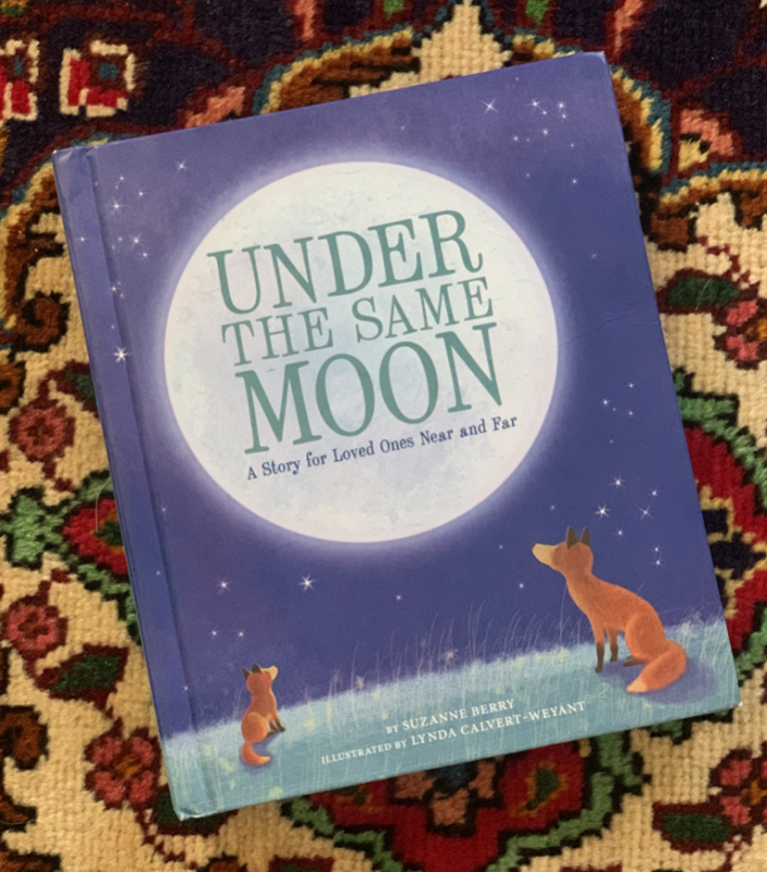 under the same moon book