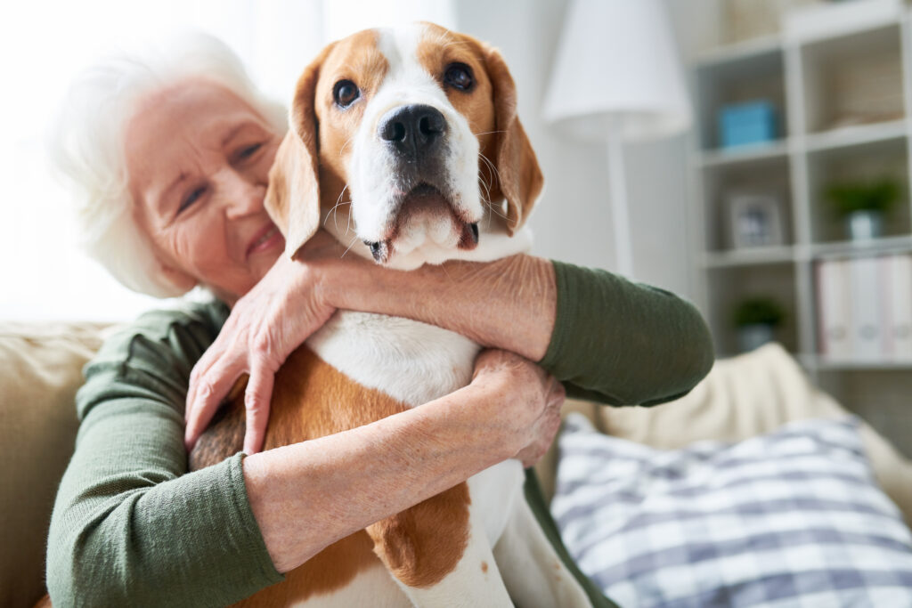 emotional support animal with senior